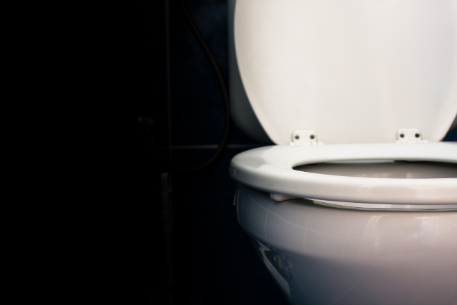 What Flappers Are Fixed In the Toilet Repair Process?